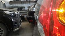 День черных автомобилей в Caralarma