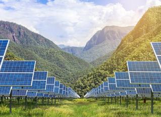Tariffs and bankruptcies: Curb your solar enthusiasm?