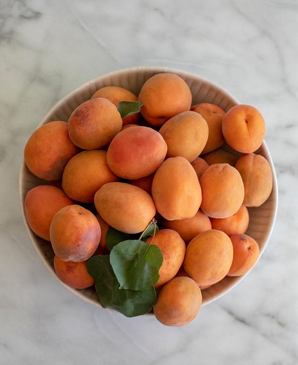 Simple and easy recipe for mini pies, honey apricot, fresh apricots, honey apricot pie, mini pies, organic pies, pies with glaze, glazed, high altitude pies #organic #apricot #freshpies #minipies #highaltitudebaking