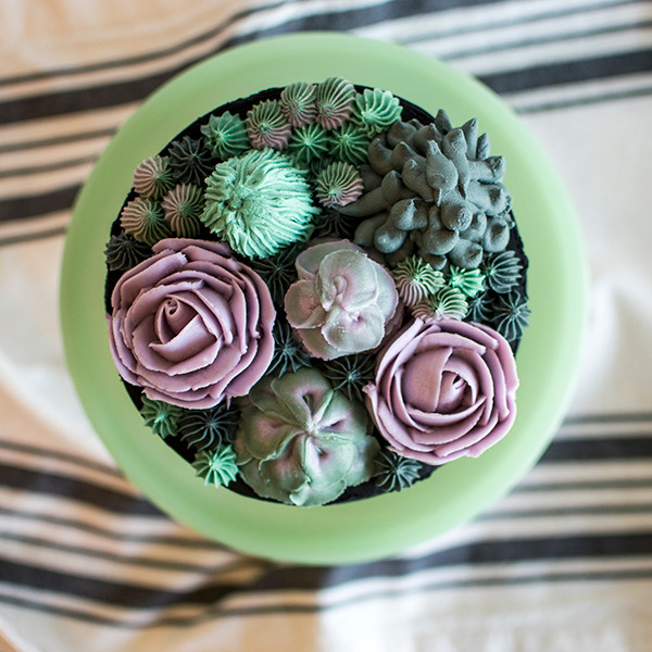 Top view of Black Succulent Cake