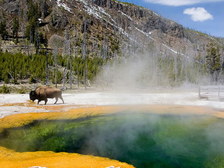 The Secret to Finding Seclusion in One of America's Busiest National Parks