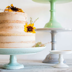 2 Tier wedding cake and cake stands
