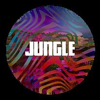 7 - Jungle.png