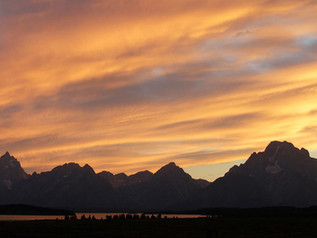 Jackson Hole featured in NY Times 2013 places to go.
