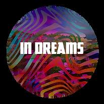11- In Dreams.png