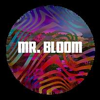 5 - MrBloom.png