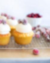 CranberryOrangeAlmondCupcakes_0001.jpg