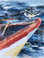 Bird on a boat