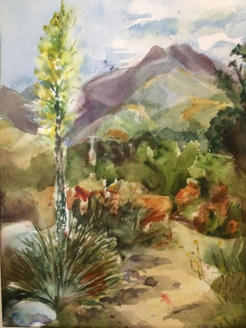 Yucca Heaven