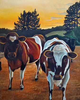 Twilight Cows