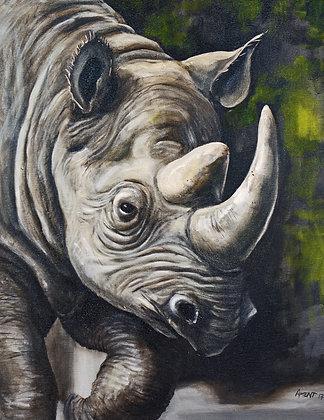 Brookfield Rhino