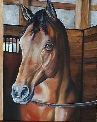 Juli's Horse