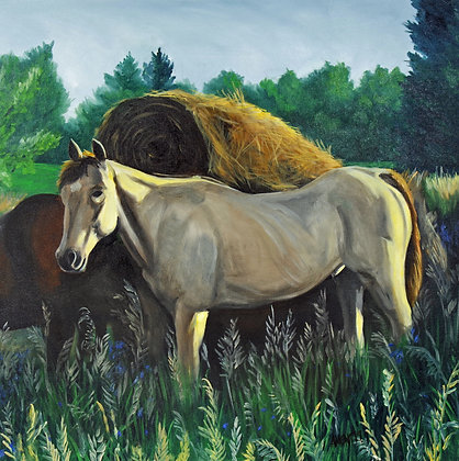 Mike's Horse
