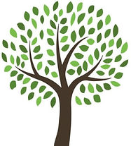 Copy of free_vector_tree_illustration_by