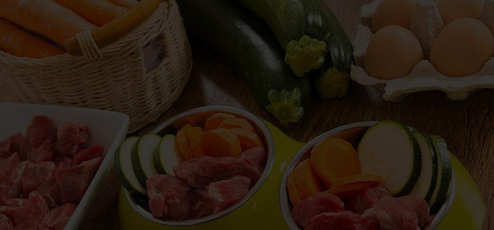 Artgerechte und gesunde Ernährung für einen Irish Terrier
