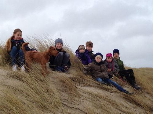 Wo Kinder sind, sind Irish Terrier nicht weit.