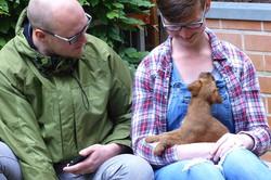 Die stolzen neuen Besitzer eines Irish Terrier Welpen