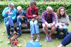 Irish Terrier Welpentag