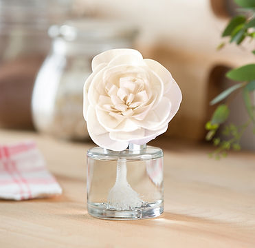 MT-FW20-Holiday-FragranceFlower-Buttercu