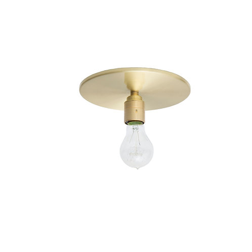 Edison Disc Ceiling Light