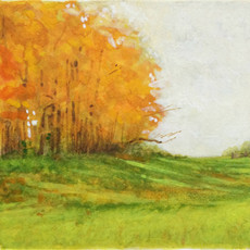 Fall At Knox Park State Park