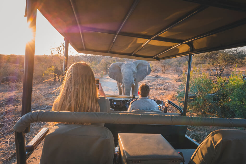 jabulani-experience-elephant-and-safari-