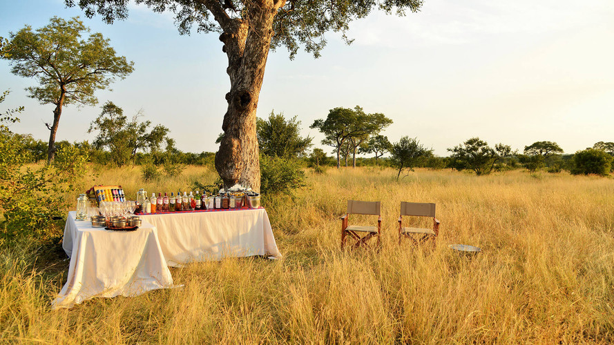 Game Drive Drinks