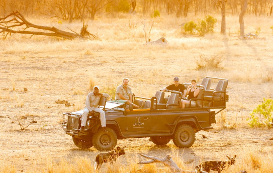 Screenshot_2020-06-17 Safari – Dulini(1)
