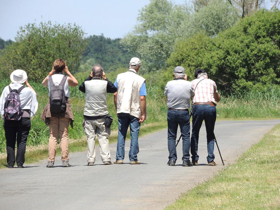 Naturalistes en balade