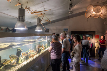 Maison des pêcheurs