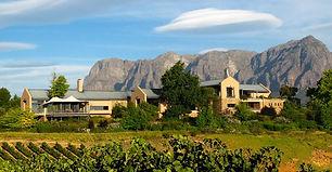 1-TOKARA_winery_Stellenbosch-960x499.jpg