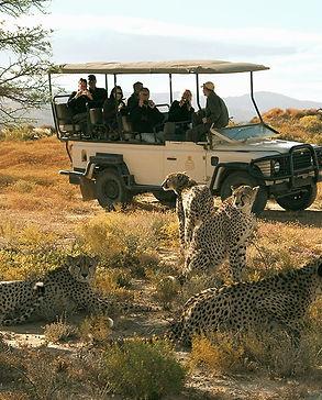 big-5-aquila-safari_edited.jpg