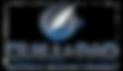 Q&P logo.png