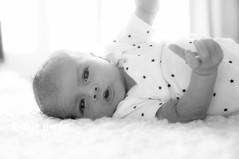Newbornportfolio-14.jpg