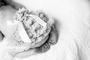 Newbornportfolio-10.jpg