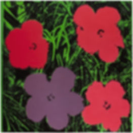 "Andy Warhol  Flowers, 1964  acrylic, silkscreen ink, and pencil on linen  80 7/8"" x 81"" inches  205.4 x 205.7 cm"