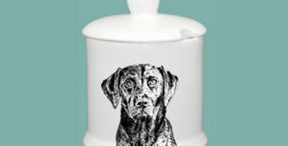Boxed, unscented candle in Condiment jar - Labrador