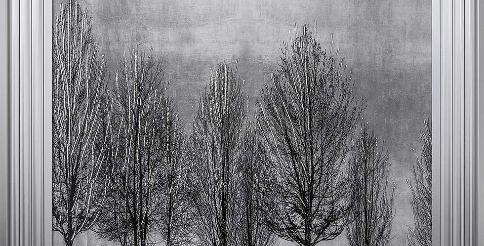 Tree Line in Silver