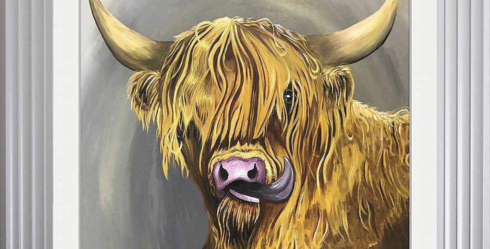 Highland Bull 2