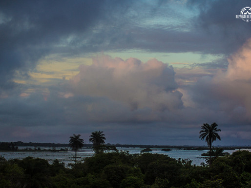 El paraíso encantado de Dialamkoto en Senegal