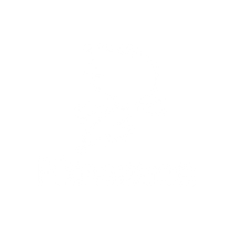 Playsome Logo White.png