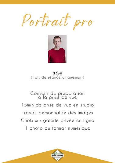 11-portrait pro.jpg