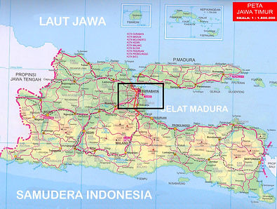 AIDAVita Stadtrundfahrt Surabaya.jpg