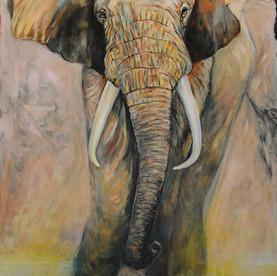 Elefante / VENDIDO