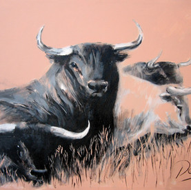 Cuatro Toros / VENDIDO