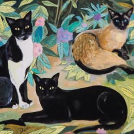 Gatos en el Paraíso