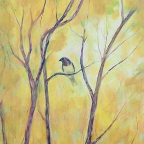 El Bosque del Recuerdo