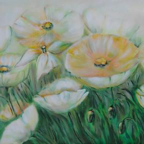 Flor de Opio