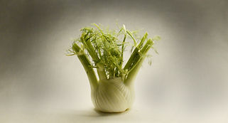 Fennel video