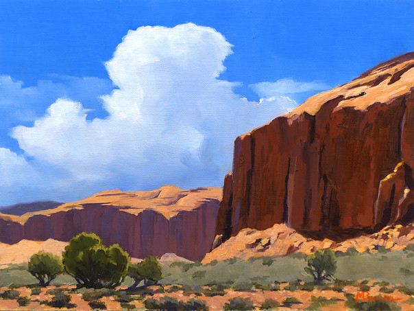 Afternoon in Monument Valley